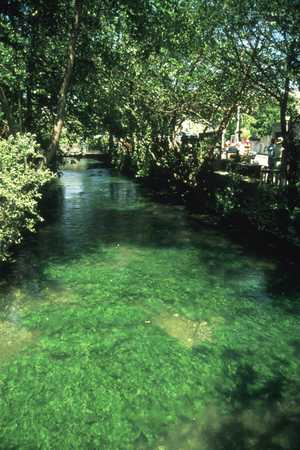 The emerald green water of the river Sorgue