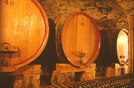 A cellar in Chateauneuf du Pape, where wines are matured and aged in oak barrels